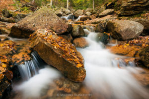 Easily-Accessible NH Waterfalls