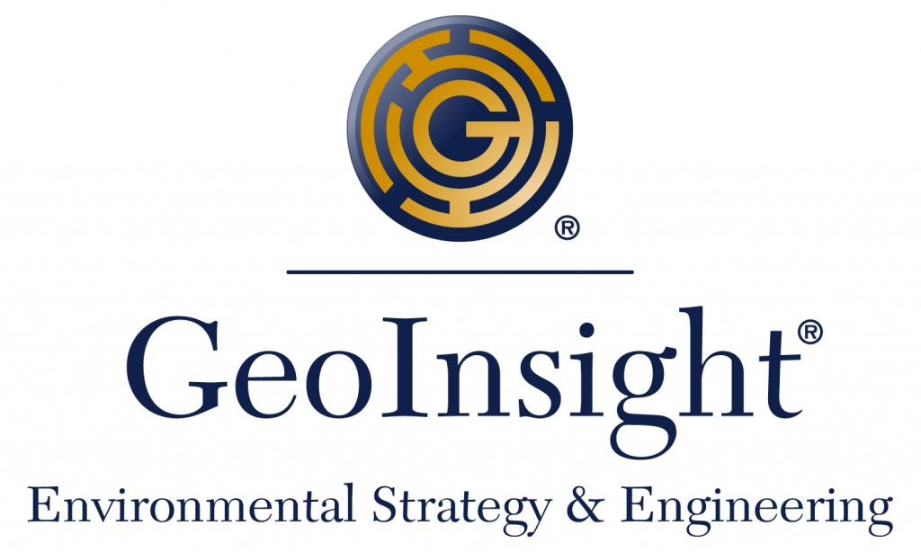 GeoINsight Color logo